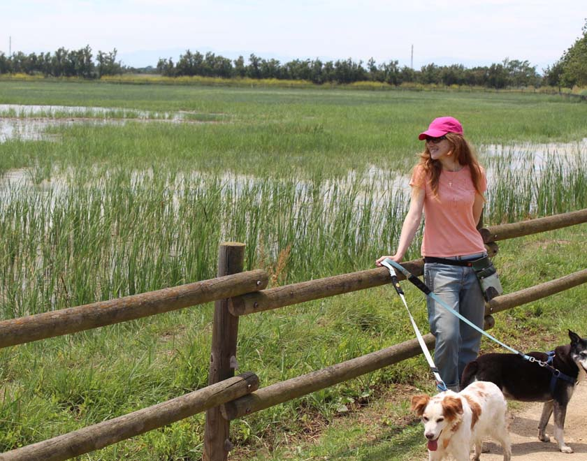 viajando-con-perros-a-pie