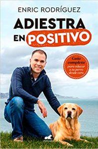 adiestramiento-en-positivo-viajar-con-perros